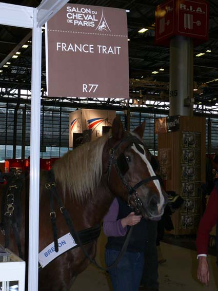 Cheval breton syndicat des eleveurs du cheval breton for Salon des vignerons paris 2017